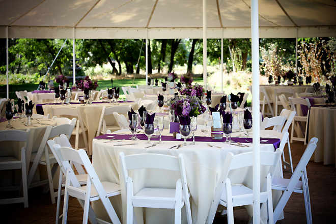 Wedding Reception under the Big Tent, Grace Vineyards, Galt, A