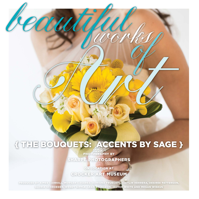 sacramento-wedding-photography-ACCENTSBYSAGE-RW-WS14-FB