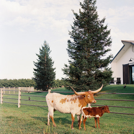 Ranch at Lone Oak Longhorns-Barn-Farm-Marysville-Venue-Real Weddings Magazine