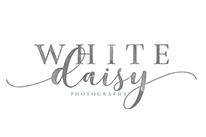 White Daisy Photography